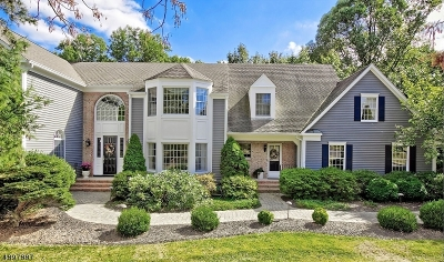 Chester Twp. NJ Single Family Home For Sale: $839,000