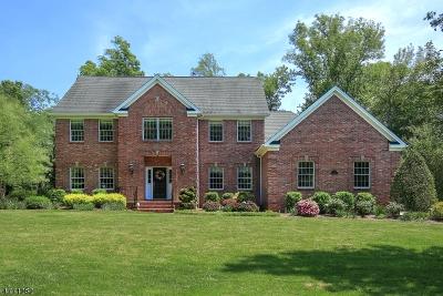 Bernards Twp., Bernardsville Boro Single Family Home For Sale: 16 Morrison St