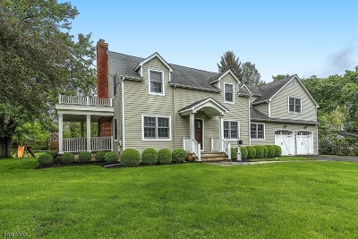 Mendham Boro NJ Single Family Home For Sale: $769,000