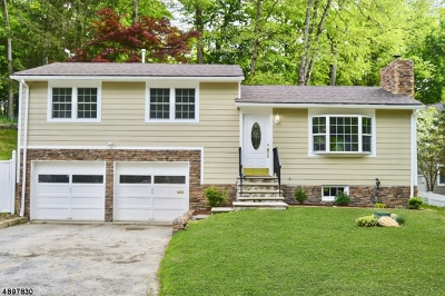 Sparta Twp. Single Family Home For Sale: 304 W Shore Trl