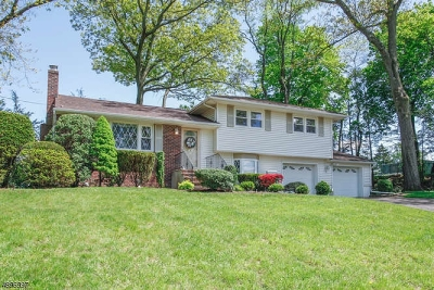Bergen County Single Family Home For Sale: 17 Crest Dr