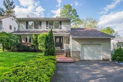 Denville Twp. Single Family Home For Sale: 17 Midwood Road
