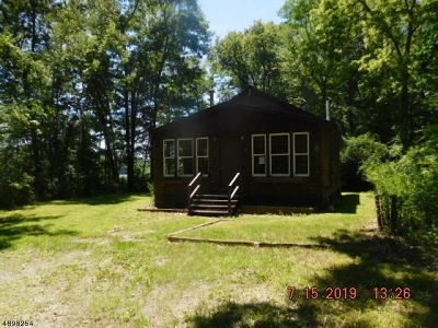 Stillwater Twp. Single Family Home For Sale: 1004 Route 521