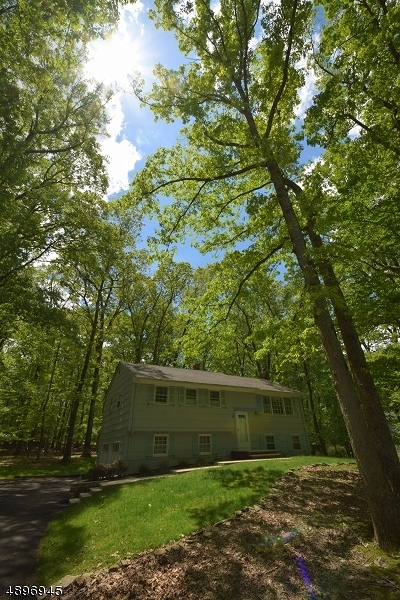 Warren Twp. Single Family Home For Sale: 4 Red Hill Rd