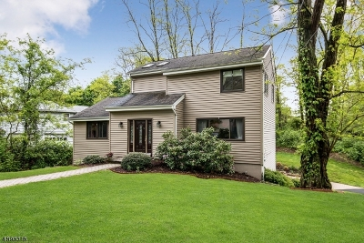 Morristown Town, Morris Twp. Single Family Home For Sale: 18 Ames Rd