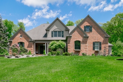 Hillsborough Twp. Single Family Home For Sale: 307 Long Hill Rd