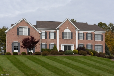 Mount Olive Twp. Single Family Home For Sale: 18 Sovereign Drive