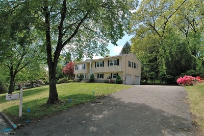 Parsippany Single Family Home For Sale: 32 S Highview Rd