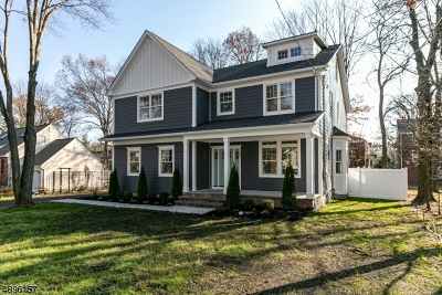 WestField Single Family Home For Sale: 357 Brightwood Ave