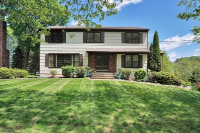 Morris Twp. Single Family Home For Sale: 14 Canterbury Way