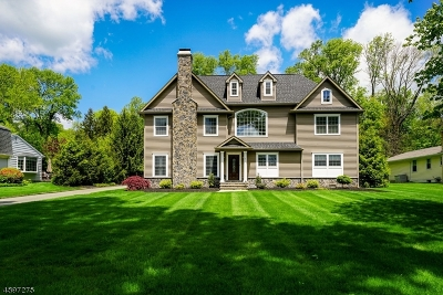 Warren Twp. Single Family Home For Sale: 11 Arrighi Dr