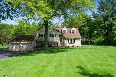Bridgewater Twp. Single Family Home For Sale: 737 Old Farm Rd