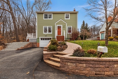 Parsippany-Troy Hills Twp. Single Family Home For Sale: 90 Bell Rd