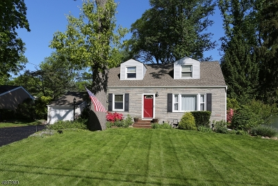Parsippany-Troy Hills Twp. Single Family Home For Sale: 538 Parsippany Blvd
