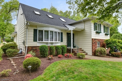 Springfield Twp. Single Family Home For Sale: 13 Tree Top Dr