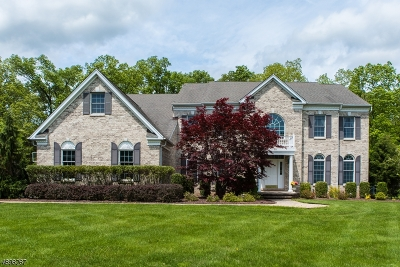 Montgomery Twp. Single Family Home For Sale: 68 Fox Chase Ln