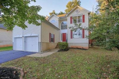 Bridgewater Twp. Single Family Home For Sale: 23 Huntley Way