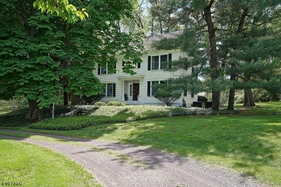 Franklin Twp. Single Family Home For Sale: 38 Edison Rd