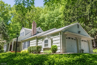 Mendham Boro, Mendham Twp. Single Family Home For Sale: 10 Cold Hill Rd