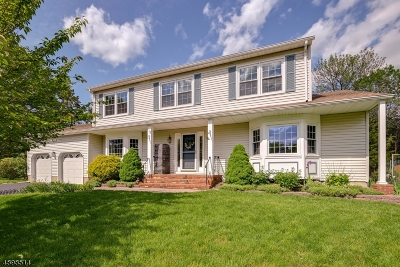 Hillsborough Twp. Single Family Home For Sale: 118 Van Dyke Ct