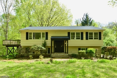Mount Olive Twp. Single Family Home For Sale: 19 Budd Lake Heights Rd