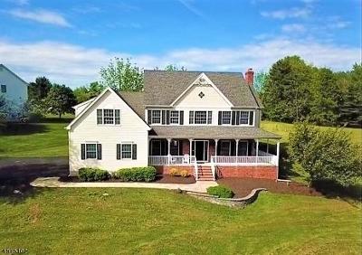 Raritan Twp. Single Family Home For Sale: 2 McPherson Dr