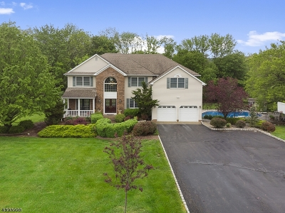 Readington Twp. Single Family Home For Sale: 2 Jennings Ln
