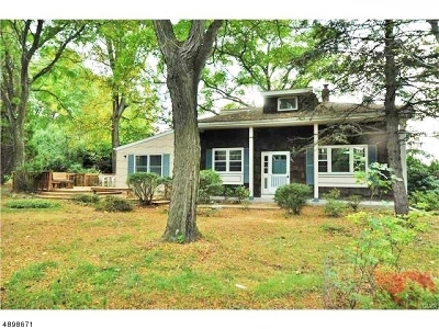 Lebanon Twp. Single Family Home For Sale: 249 Mt Airy Rd