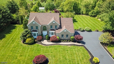 Readington Twp. Single Family Home For Sale: 263 Summer Rd