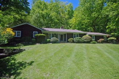 Bridgewater Twp. Single Family Home For Sale: 1441 Hunter Rd