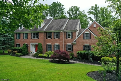 Chester Twp. NJ Single Family Home For Sale: $929,000