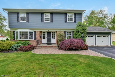 Florham Park Boro Single Family Home For Sale: 3 Harvale Drive