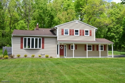 Long Hill Twp Single Family Home For Sale: 90 Clover Hill Rd