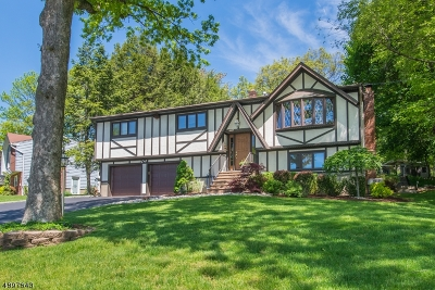 Boonton Town Single Family Home For Sale: 311 Horizon Dr