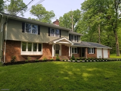 Delaware Twp. Single Family Home For Sale: 9 Whiskey Ln