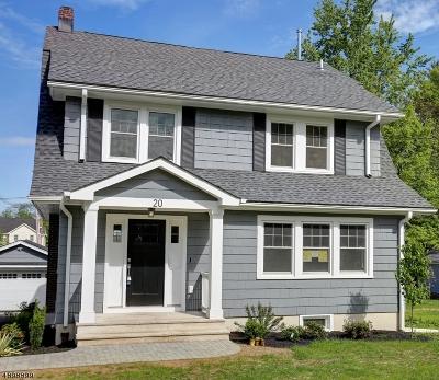 Madison Boro Single Family Home For Sale: 20 Loantaka Way