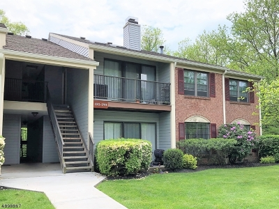 Bernards Twp. Condo/Townhouse For Sale: 182 Irving Pl