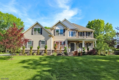 Bridgewater Twp. Single Family Home For Sale: 8 Andover Ave