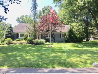 Bedminster Twp. Single Family Home For Sale: 555 Country Club Rd