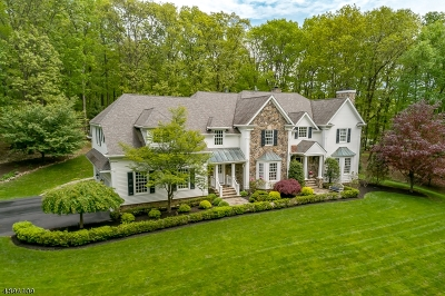 Tewksbury Twp. Single Family Home For Sale: 31a Philhower