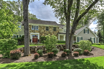 Mendham Boro, Mendham Twp. Single Family Home For Sale: 34 Brookrace Dr