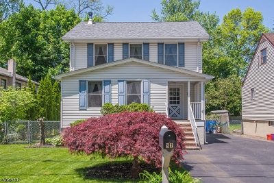 Denville Twp. Single Family Home For Sale: 31 Hinchman Avenue