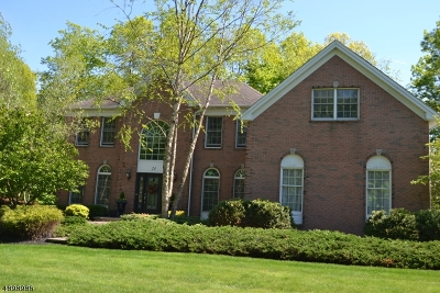 Mount Olive Twp. Single Family Home For Sale: 24 Carlton Rd