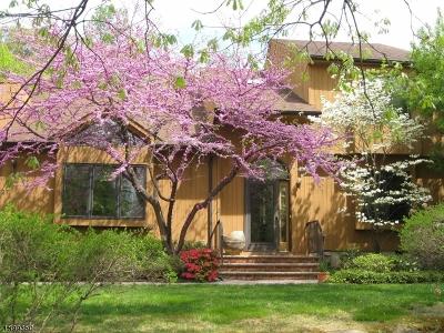Mountain Lakes Boro Condo/Townhouse For Sale: 27 Sherwood Dr