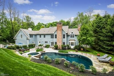 Bernardsville Boro Single Family Home For Sale: 60-2 Lloyd Rd