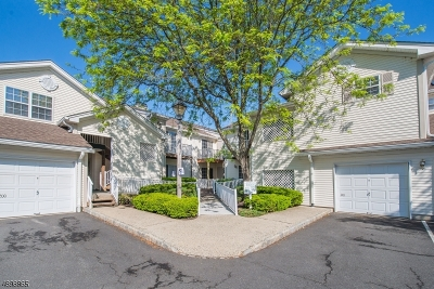 Bernards Twp. Condo/Townhouse For Sale: 194 Potomac Dr