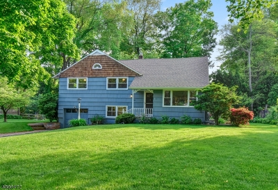 Morristown Town, Morris Twp. Single Family Home For Sale: 10 Maxine Dr