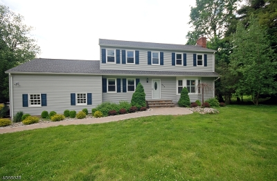 Branchburg Twp. Single Family Home For Sale: 444 Whiton Rd