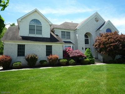 Montgomery Twp. Single Family Home For Sale: 11 Ford Ct