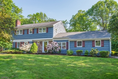 Morris Plains Boro Single Family Home For Sale: 29 Beech Dr
